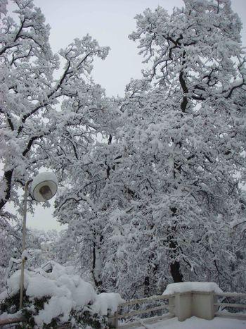Neige à marseille 2
