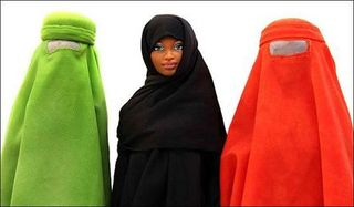 Barbies%20burqa-thumb-400x234-15461
